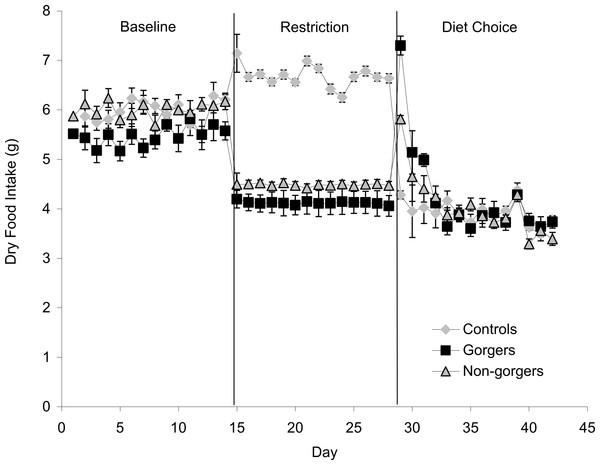 Mean daily dry food intake (g/day) during baseline, restriction and diet choice for the three groups (controls, gorgers and non-gorgers).