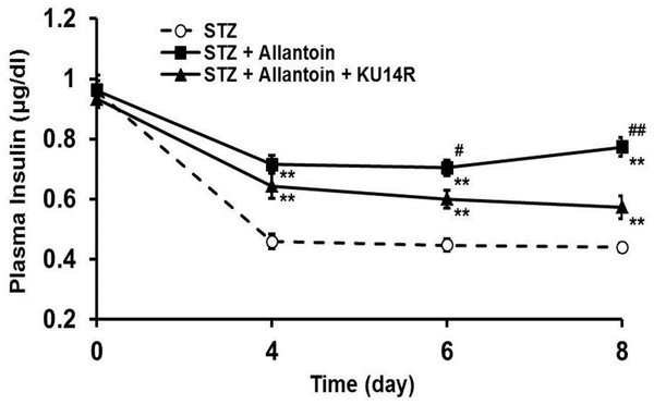 Effects of allantoin and KU14R on plasma insulin levels in streptozotocin (STZ) -treated rats.
