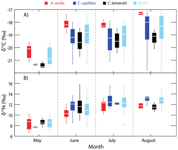 Temporal variation in jellyfish δ13C and δ15N.