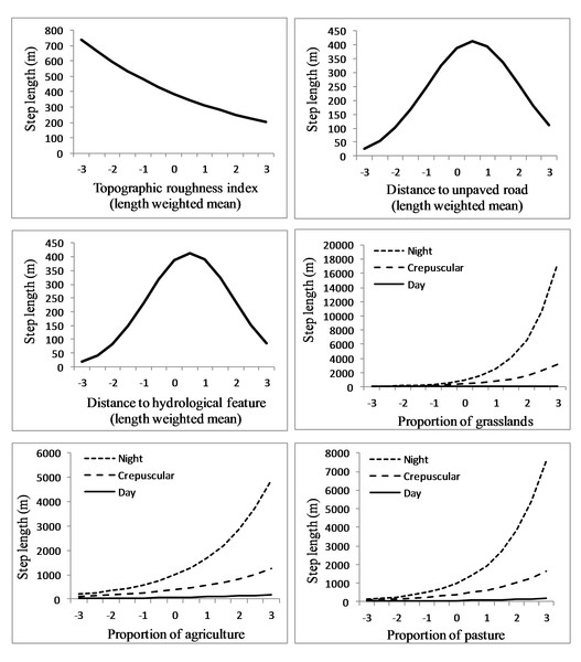 Movement rates of sub-adult cougars.