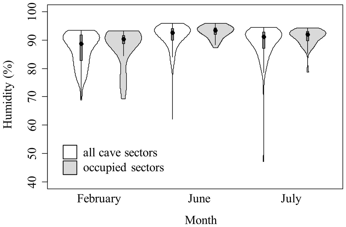 Table Salamanger Violon : Violin plots representing humidity in cave sectors available (white ...