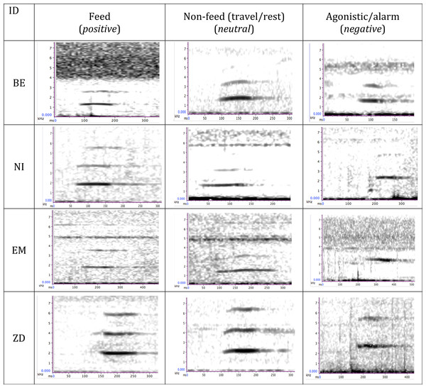 Time–frequency spectrograms illustrating peeps produced by four wild bonobos (BE, EM, ZD, male; NI, female) during different behavioural contexts.