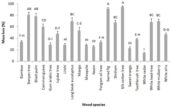 Mean percent mass loss of various wood species after 45 days no-choice feeding test against M. mycophagus.