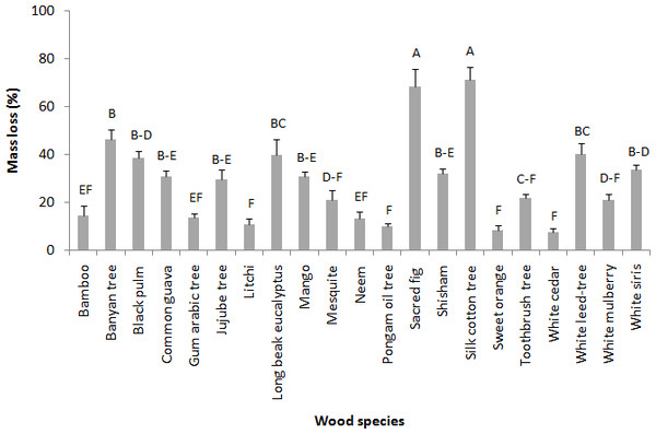 Mean mass loss (%) of various wood species after 45 days choice feeding test against M. mycophagus.