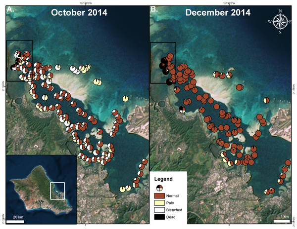 Extent of 2014 bleaching event.