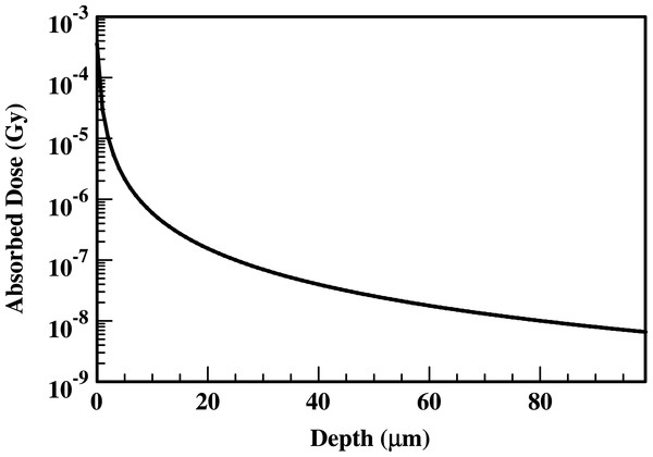 Absorbed dose profiles for 210Po photons in water.
