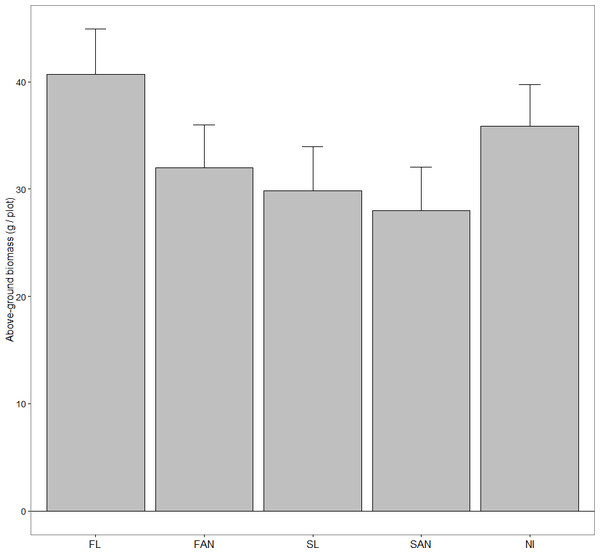 Above-ground biomass of A. petiolata (mean + 95% CI) harvested after seed maturation in June 2007.
