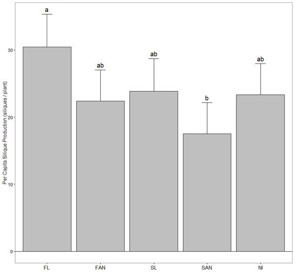 Per capita silique production in A. petiolata (mean + 95% CI) harvested in June 2007.