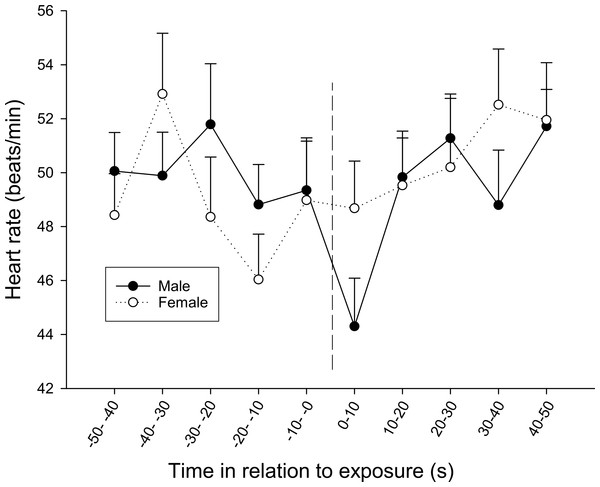 The overall difference in heart rate response between sexes during the first observation.