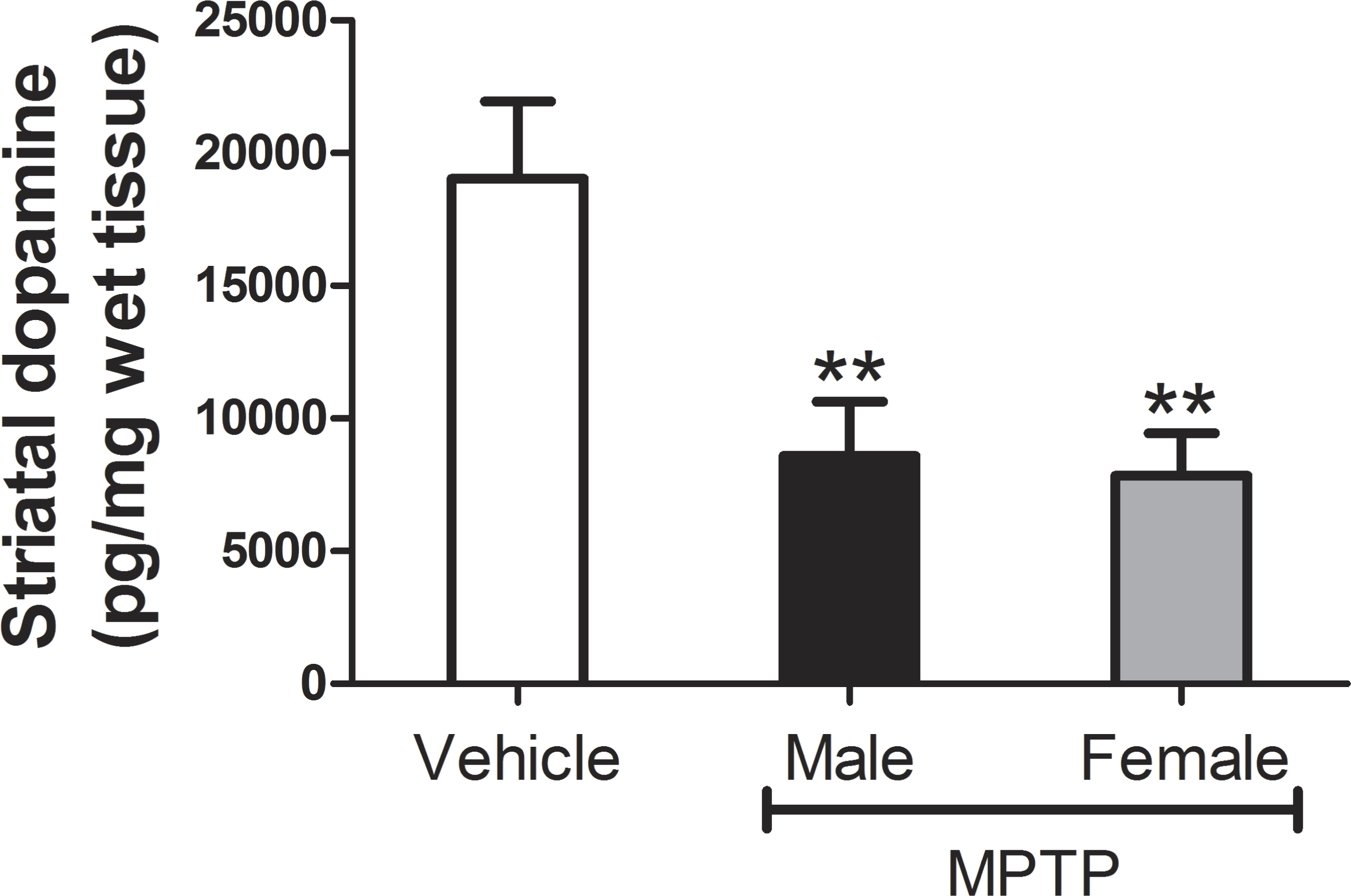 A novel biomechanical analysis of gait changes in the MPTP mouse