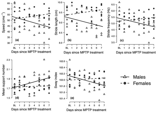 Longitudinal changes in locomotor performance following MPTP administration in male and female mice.