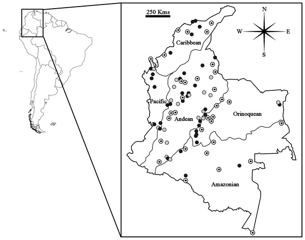 Map showing geographical distribution of locations sampled for Carollia perspicillata (concentric circles), C. brevicauda (grey circles) and C. castanea (black circles), within the biogeographic regions present in Colombia.