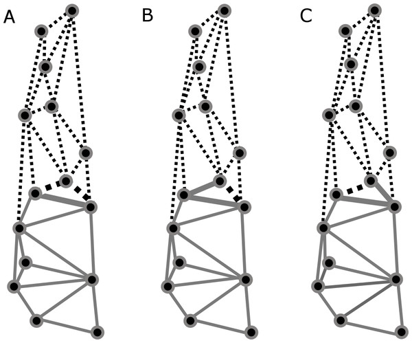 Patterns recovered for cranial modularity for C. brevicauda (A), C. castanea (B), and C. perspicillata (C), showing the neurocranium (grey-solid lines) and the splachnocranium (black-dotted lines).