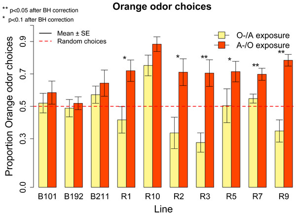 Proportion of orange odor choices for each tested line conditioned with Orange aversive/Apple palatable (O-/A exposure) and Apple aversive/Orange palatable (A-/O exposure).
