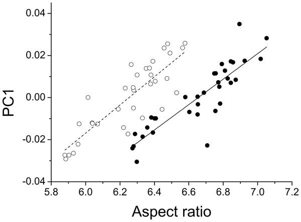 Aspect ratio vs. geometric morphometrics.