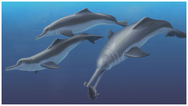 Reconstruction of Isthminia.