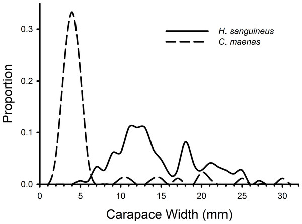 Size frequency distributions of crabs in rocky substrate.