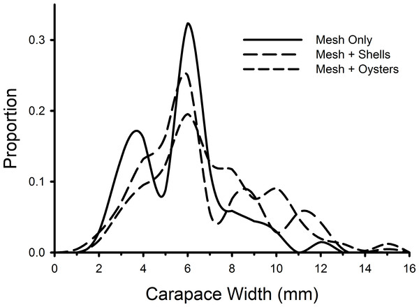 Size frequency distributions of crabs in mesh bags.