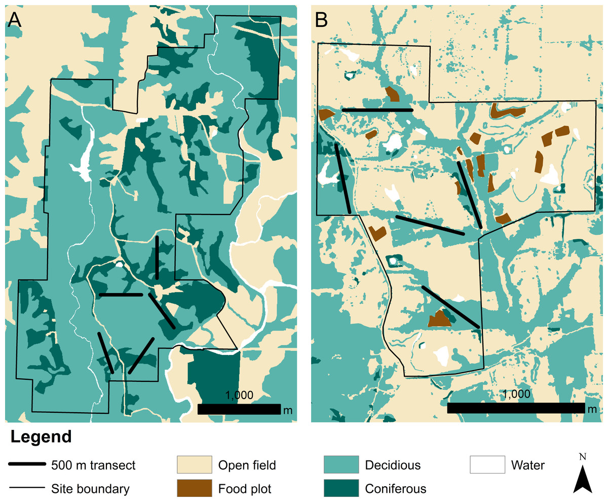 Demographics and density estimates of two three toed box turtle land cover at the a thomas s baskett wildlife research and education center nvjuhfo Gallery