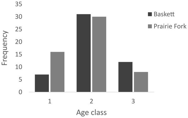 Number of individuals in age classes 1, 2, and 3 at the Thomas S. Baskett Wildlife Research and Education Center (Baskett) and the Prairie Fork Conservation Area (Prairie Fork).