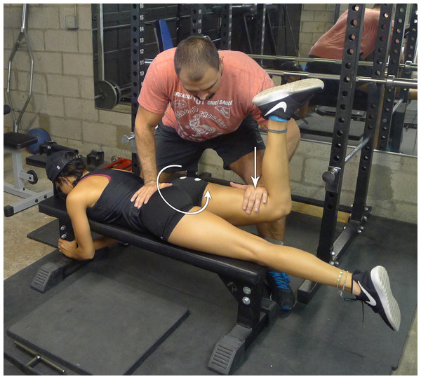 Prone bent-leg hip extension against manual resistance.
