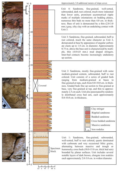 Stratigraphic section recorded at the type locality of Dakotadon lakotaensis.