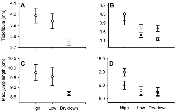 Effect of water depth and resources manipulations on tibiofibula length and jumping performance.