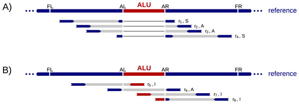 Example read alignments at an Alu deletion site.