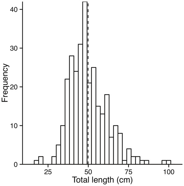 Size class distribution of fish used to assess growth.