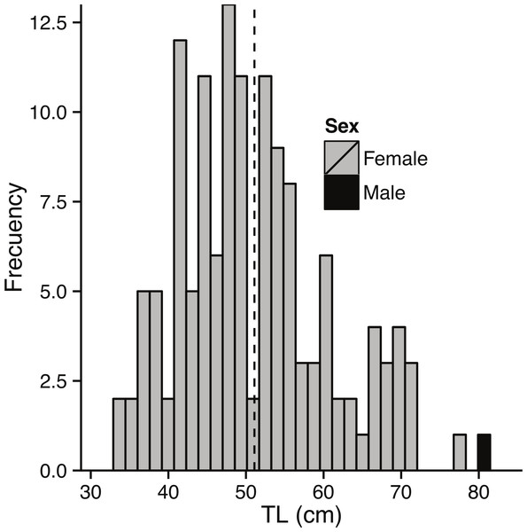 Size composition of bacalao sampled for gonads.