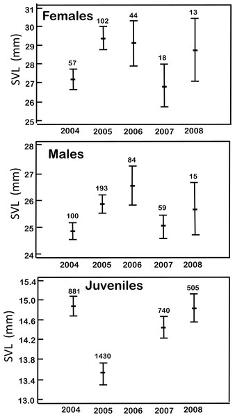 Mean body size (SVL ± 1SD) in the age-sex categories of H. eximia during the five-year study at Ocoyoacac, State of Mexico.