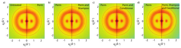 Split graphs comparing the effects of shampoo and conditioner on permanently waved hair.