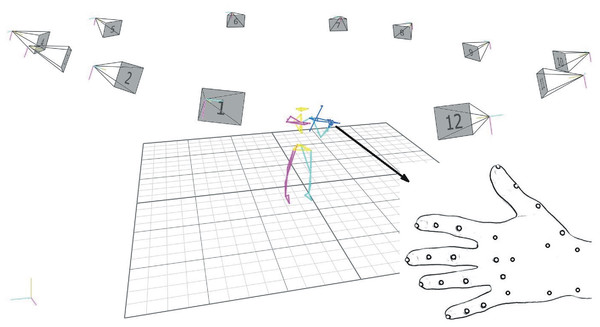 3-D motion capture set-up (12 high-speed cameras), subject reconstruction (biomechanical model), left-hand marker placement.
