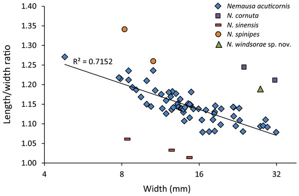 Carapace length/width ratio vs. log2 carapace width (mm) for Nemausa spp.