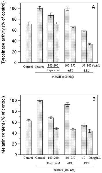 Effect of leaves extracts on B16F10 melanoma cells.