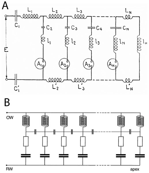 Equivalent circuits of the transmission line and the vibrating reed systems.