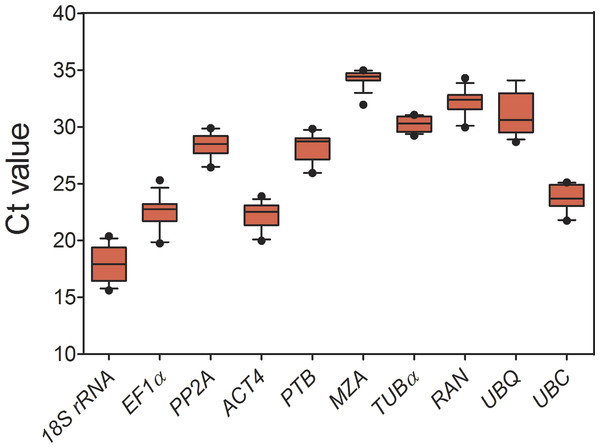 Expression levels of 10 candidate reference genes across all experimental samples.