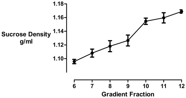 Sucrose density gradient profile.