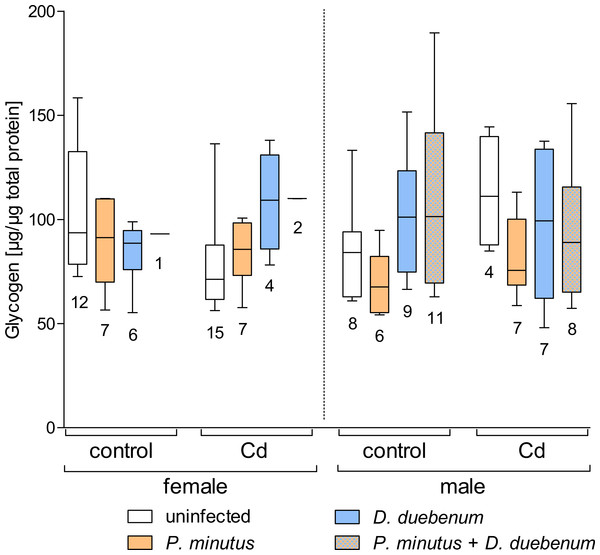 Glycogen content in infected and uninfected G. fossarum females and males after cadmium exposure.