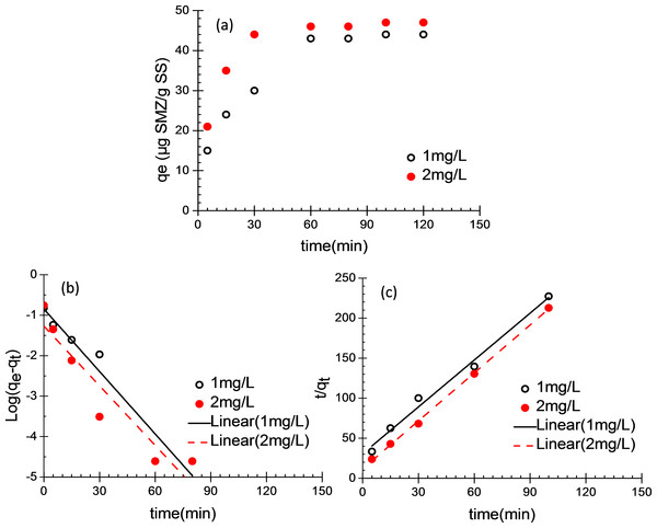 Batch adsorption of SMZ by acclimatized activated sludge.