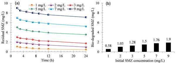 Biodegradation of SMZ by acclimatized activated sludge at different initial concentrations.