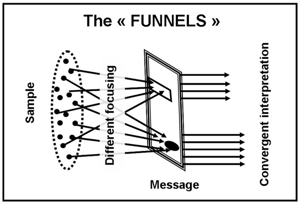 "The ""funnel-shape"" model."
