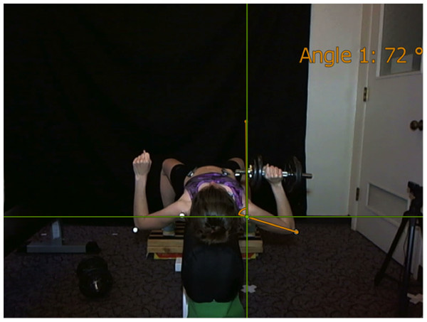Angular representation of the measurement of shoulder complex range of motion.