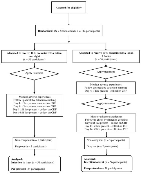 Flowchart of participants through the second clinical study.