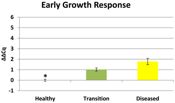 Expression of early growth response (EGR).