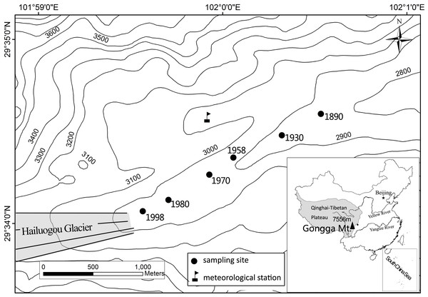 Sketched map of Hailuogou Glacier retreat area and the sampling sites.
