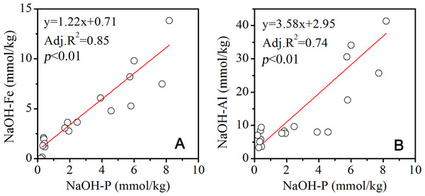 Correlation between P and Fe, Al in the NaOH extracted solution.