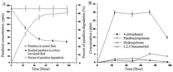 Parathion degradation profile of BUR11.