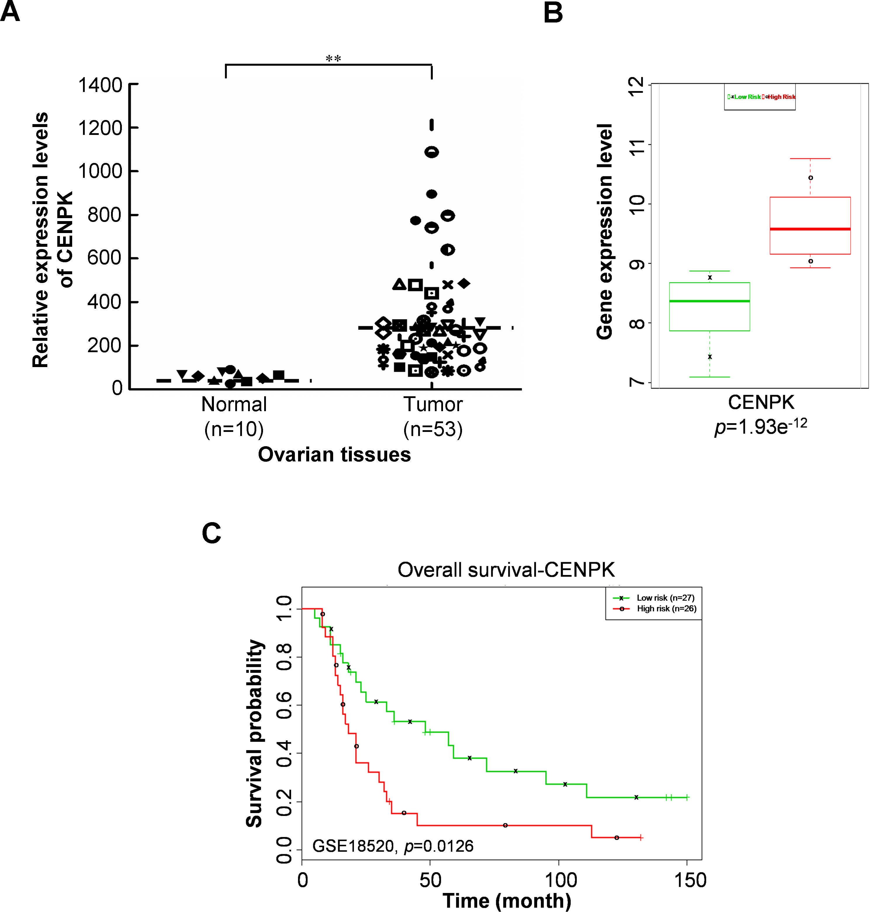 Overexpression Of Centromere Protein K Cenpk In Ovarian Cancer Is Correlated With Poor Patient Survival And Associated With Predictive And Prognostic Relevance Peerj