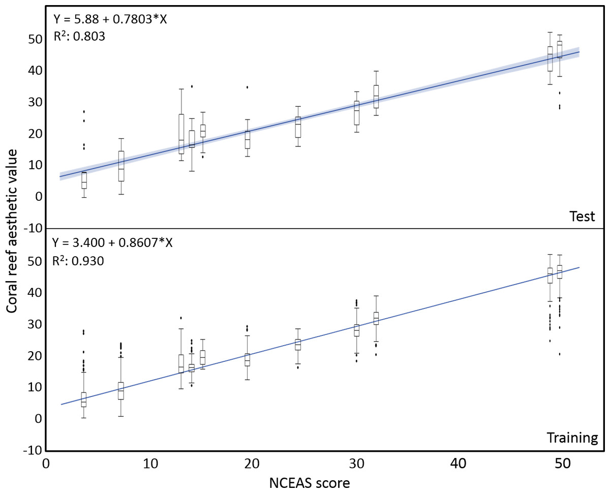 Can we measure beauty? Computational evaluation of coral